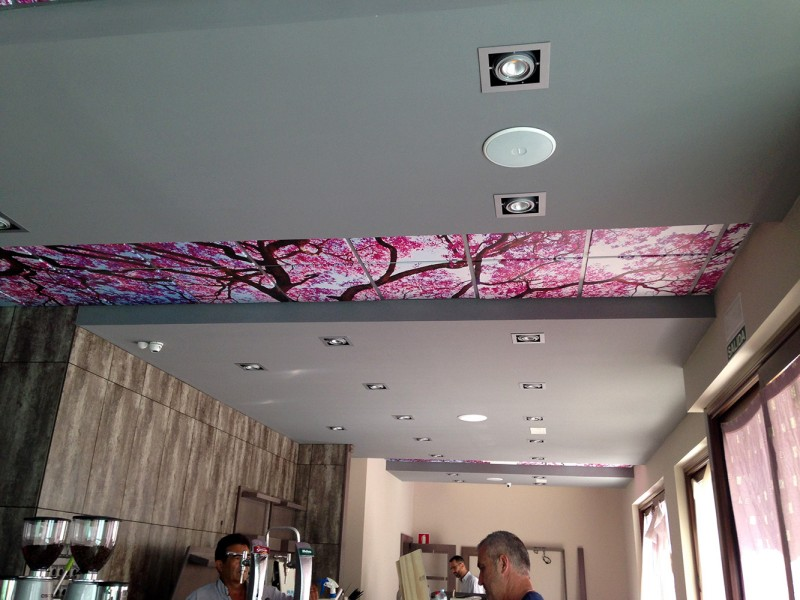Caf bar el trebolcaf bar el trebol for Iluminacion led malaga